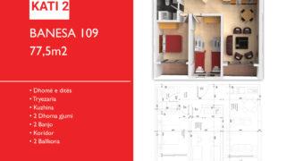 Banesa 109 Hyrja C